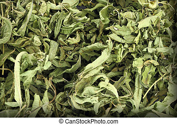 Close up of dried lemon verbena