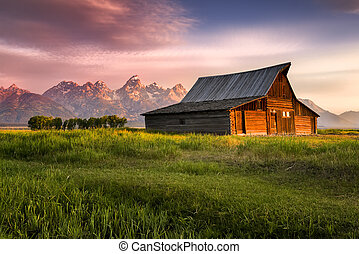 T A Moulton Barn - Early morning sunshine illuminating the...