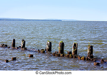 Old Wooden Posts in Lake
