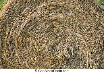 Hay Bale - Close up of a hay bale