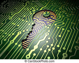 Privacy concept: Key on circuit board background - Privacy...