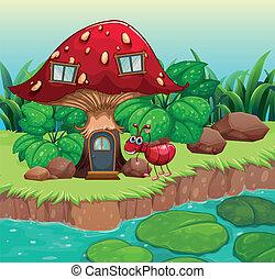 um, formiga, vermelho, cogumelo, casa