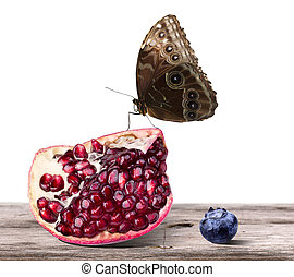 Ripe pomegranate and tasty blueberry fruit with butterfly -...