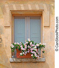 window and flowers - window with flowers on the sill