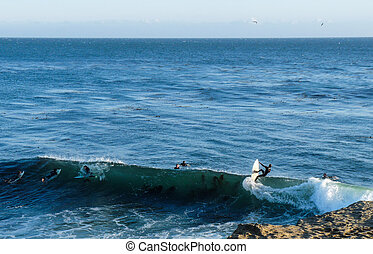 Wetsuit Surfing Steamer Lane - Surfers on an October...