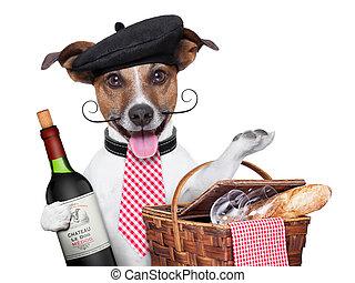 francés, perro