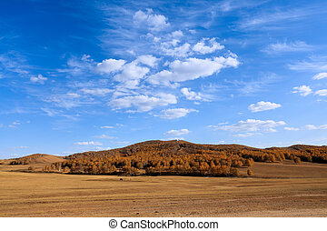 autumn prairie with sky - autumn prairie under the blue sky
