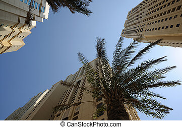 Highrise buildings in the city of Dubai