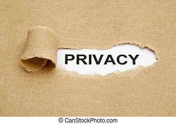 Privacy Concept - The word Privacy appearing behind torn...
