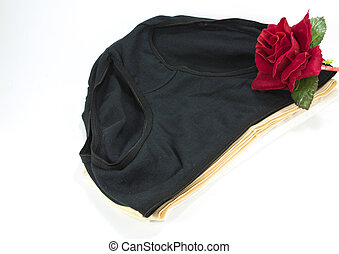 Red rose and simple womens cotton panties on white...
