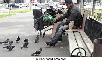 Sharing - City tramp sharing bread with pigeons