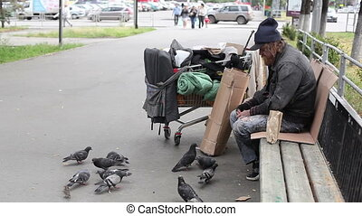 Feathered friends - Bearded homeless man feeding pigeons in...