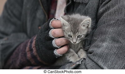 Grey kitten - Close-up of a bearded man holding a grey...