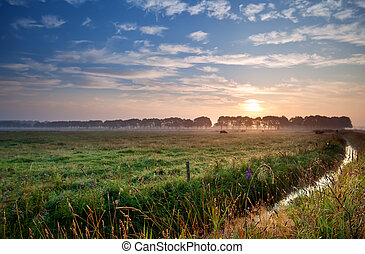 sunrise over green pastoral - summer sunrise over Dutch...