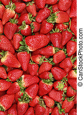 Strawberries background with copy space