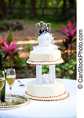 Gay Wedding Cake in Garden - Wedding cake and champagne set...