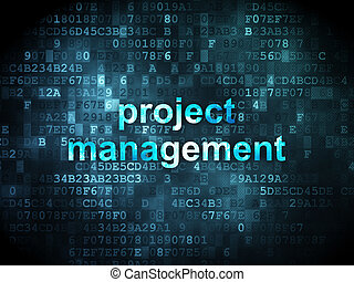 Business concept: Project Management on digital background -...