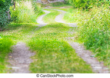 Country road in rural landscape - Old country road during...