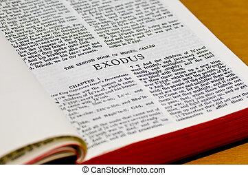 bíblia, página, -, êxodo