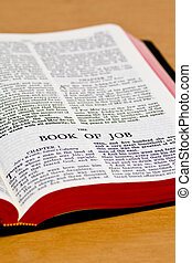 Bible Page - Job - Close up of Job bible page