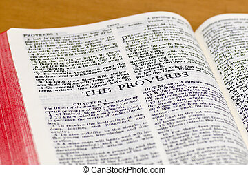 Bible Page - Proverbs - Close up of Proverbs bible page