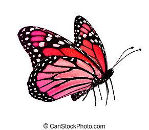 rose, papillon, rouges