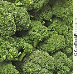 Simply Broccoli - Delicious looking fresh broccoli piled up...