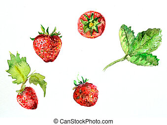 watercolor painting of strawberries