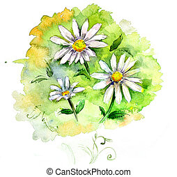 watercolor Field flowers