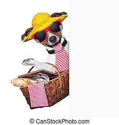 picnic dog behind placard with basket and bread
