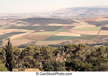 Israel landscape - Jezreel valley landscape with cultivated...