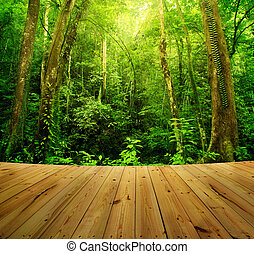 Rain forest - Wooden floor and Tropical Rainforest...