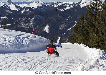 Sledding down Wallberg moutain, Bavaria