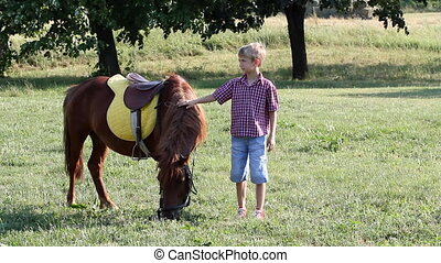 boy and pony horse