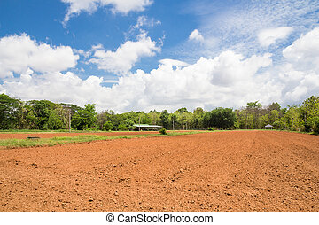 Tillage farm and blue sky