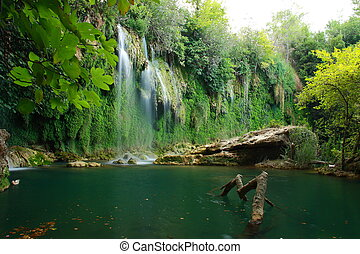 waterfall view in kursunlu antalya - tree roots and water...