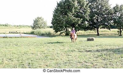 child riding pony horse