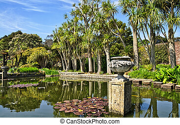 Pond and trees in Logan Botanic Gardens - View of a palm...