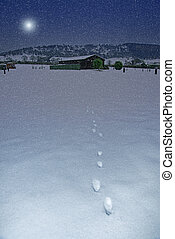 Footprints on a snowy night - Footprints across a snowy...