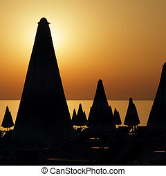 beach at sunset - silhouettes of many furled beach umbrellas...