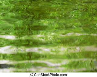 abstract reflection - Reflection of foilage on water