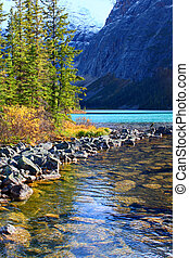 Cavell Lake Jasper National Park - Shoreline of Cavell Lake...