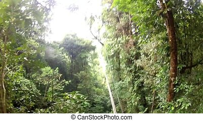 Jungle Jump. swing on a rope