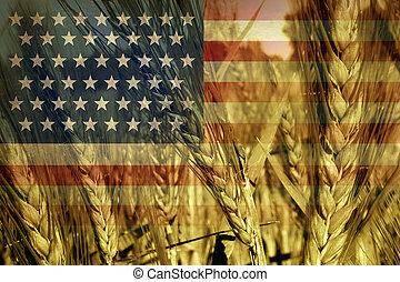 American Agriculture - American agriculture concept and...