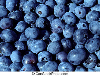 Blueberries fruit - Blueberries blue fruit background for a...