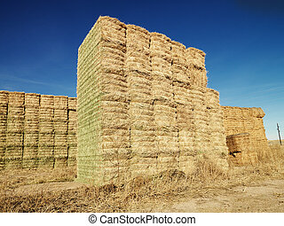 Bales of hay. - Bales of hay in rural setting.