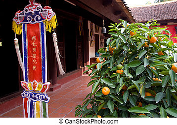 Orange tree and religious pennant at Buddhist temple