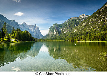 Landscape - Summer landscape with peaceful lake and...