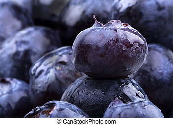 blue berries with water drops - Freshly picked blue berries...