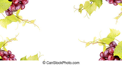Pink grape isolated on white background